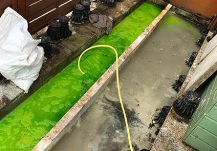 recherche-de-fuite-par-la-fluoresceine-440x333